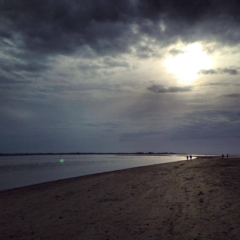 Promenade de fin de journée en baie de Somme