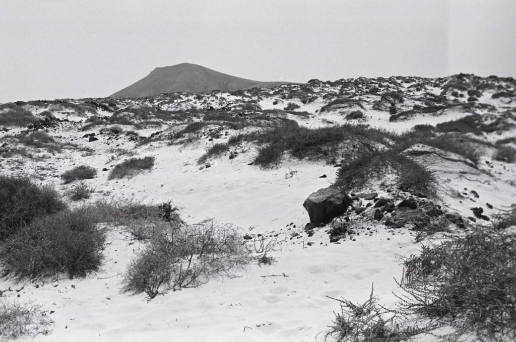 Au nord de l'île, à perte de vue, des dunes et du sable