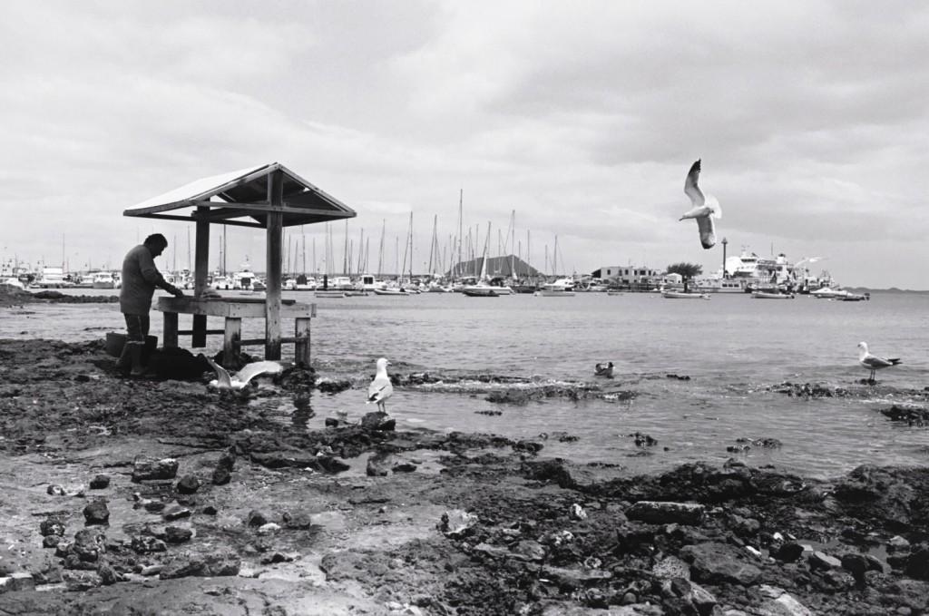 Un homme écaille des poissons à Coralejo