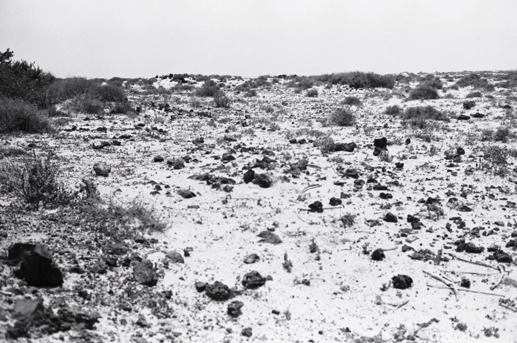 Un paysage désertique au nord de l'île de Fuerteventura