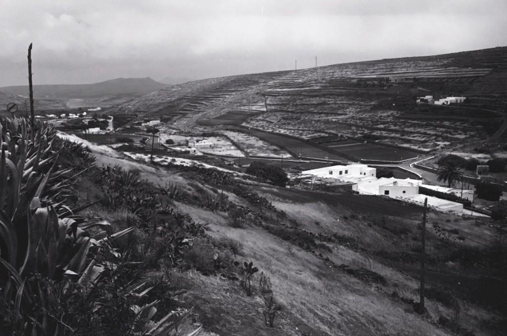 Lanzarote une île tournée vers l'agriculture