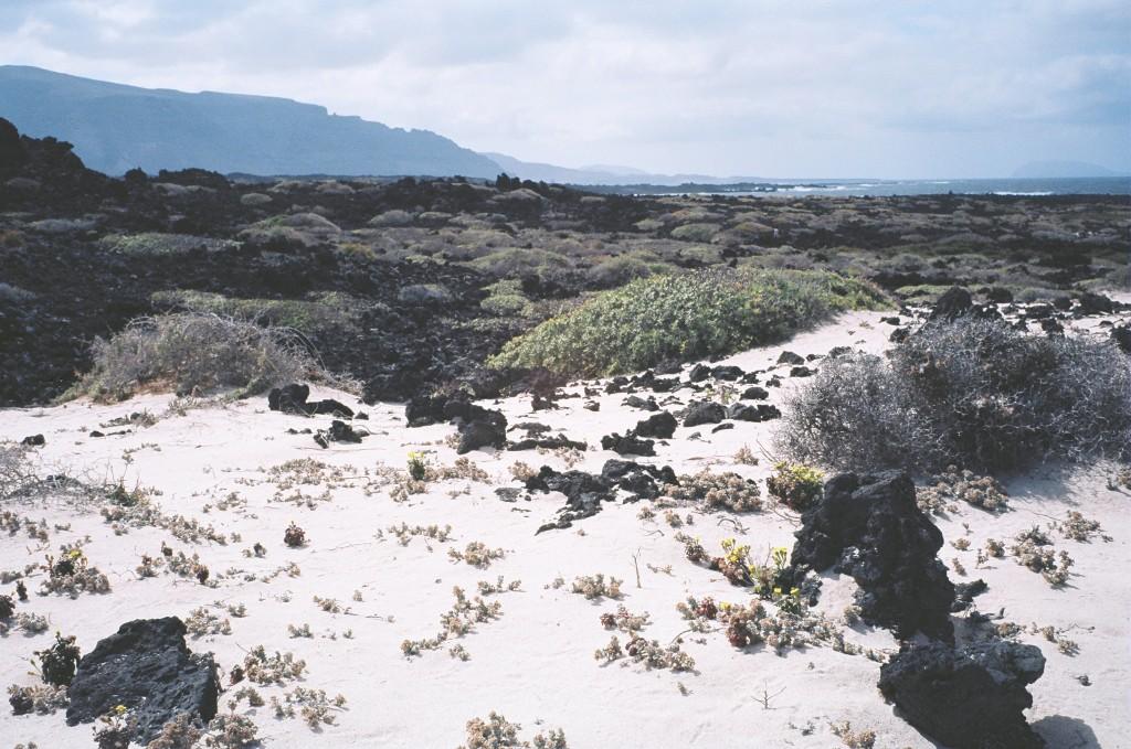 Le nord de l'île de Lanzarote