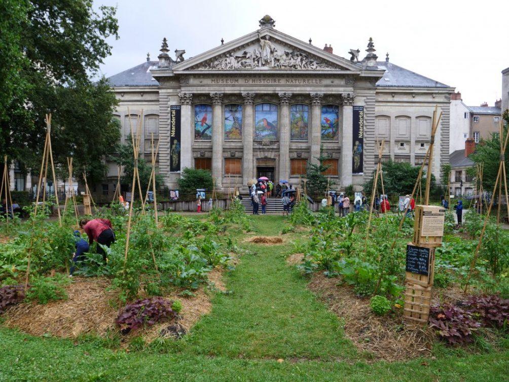 L'un des plus beaux endroits de Nantes le Square Louis Bureau et le Museum d'Histoire Naturelle