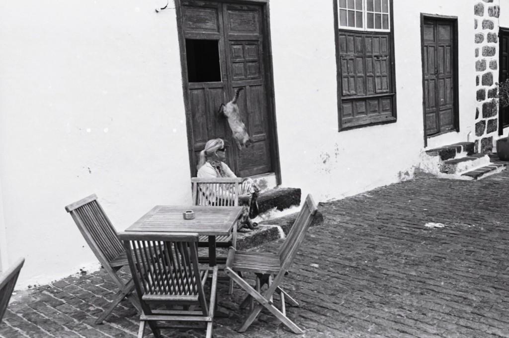 Un chat s'échappe de son domicile, Lanzarote