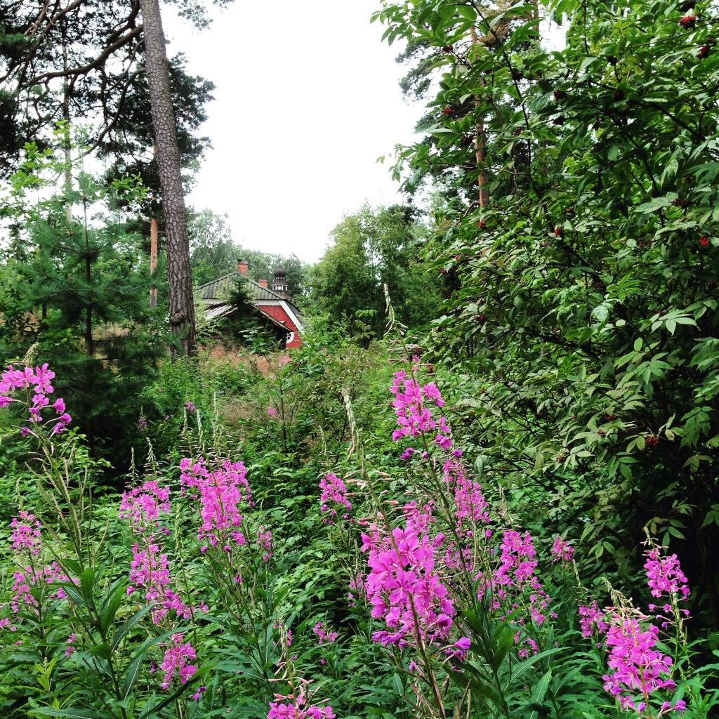 72. Une cabane perdue au milieu des bois