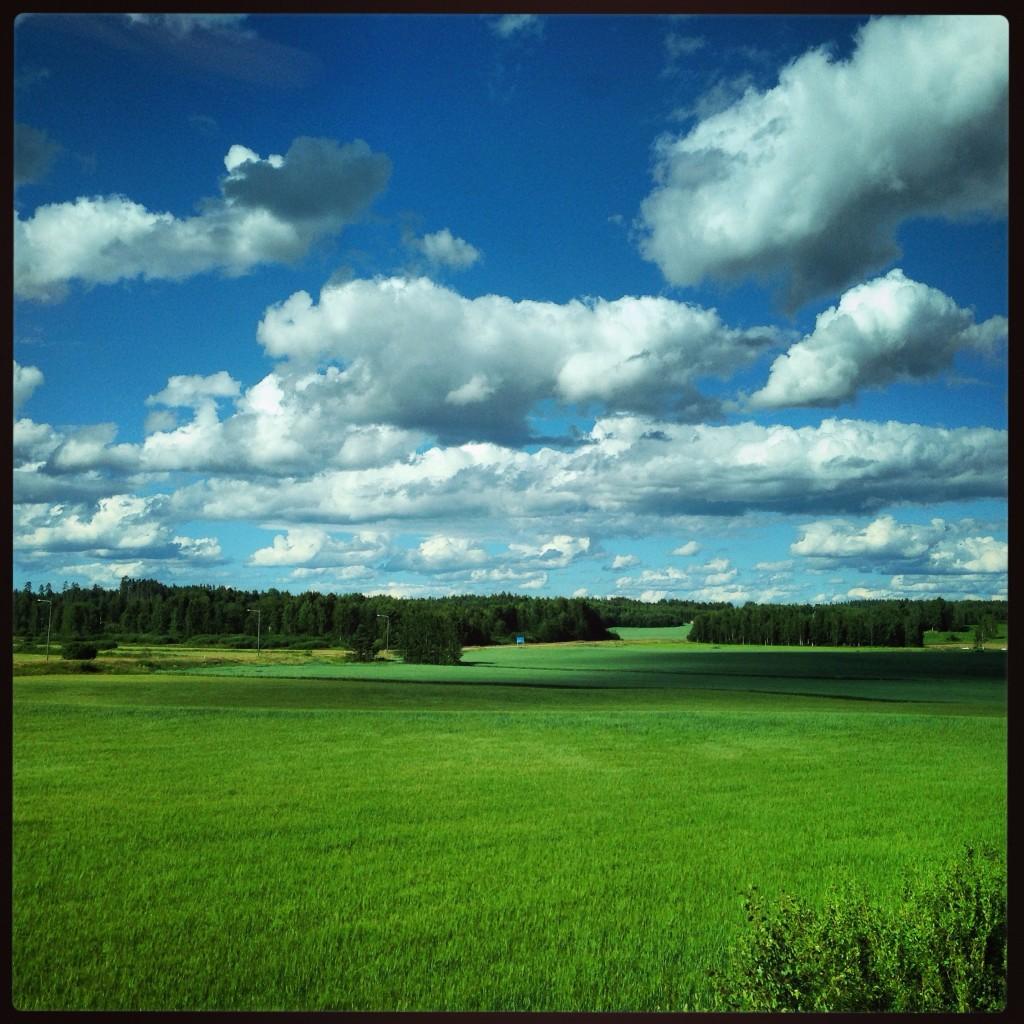4. Les grandes prairies finlandaises