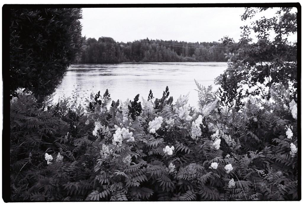 L'été en Finlande et en noir et blanc