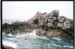 Des cormorans se reposent sur les rochers