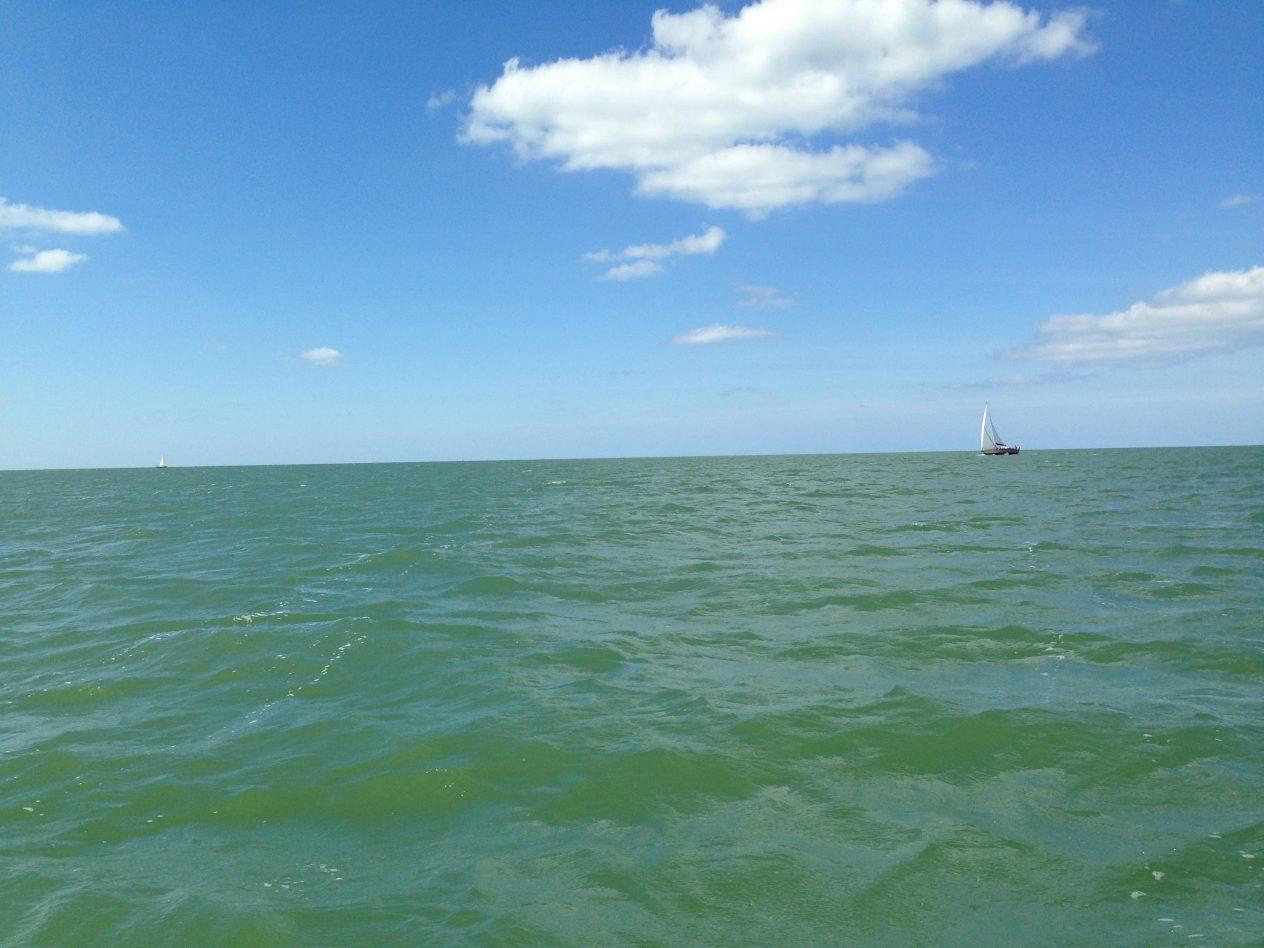 En absorbant la lumière bleue, les algues donnent une couleur verte à la mer