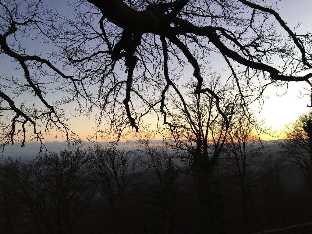 Vue imprenable sur les plaines d'Alsace depuis le château du Haut-Koenigsbourg