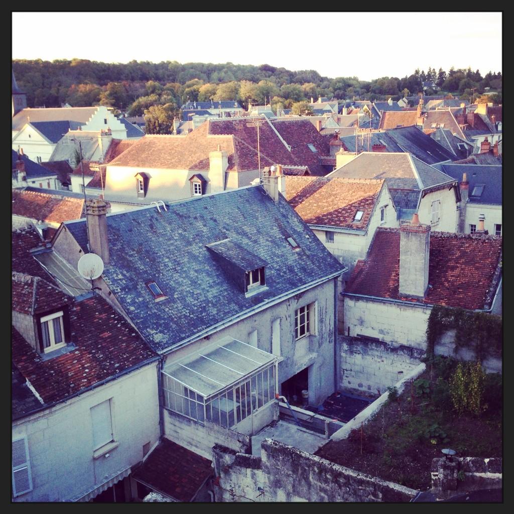Vue imprenable sur les toits de la ville