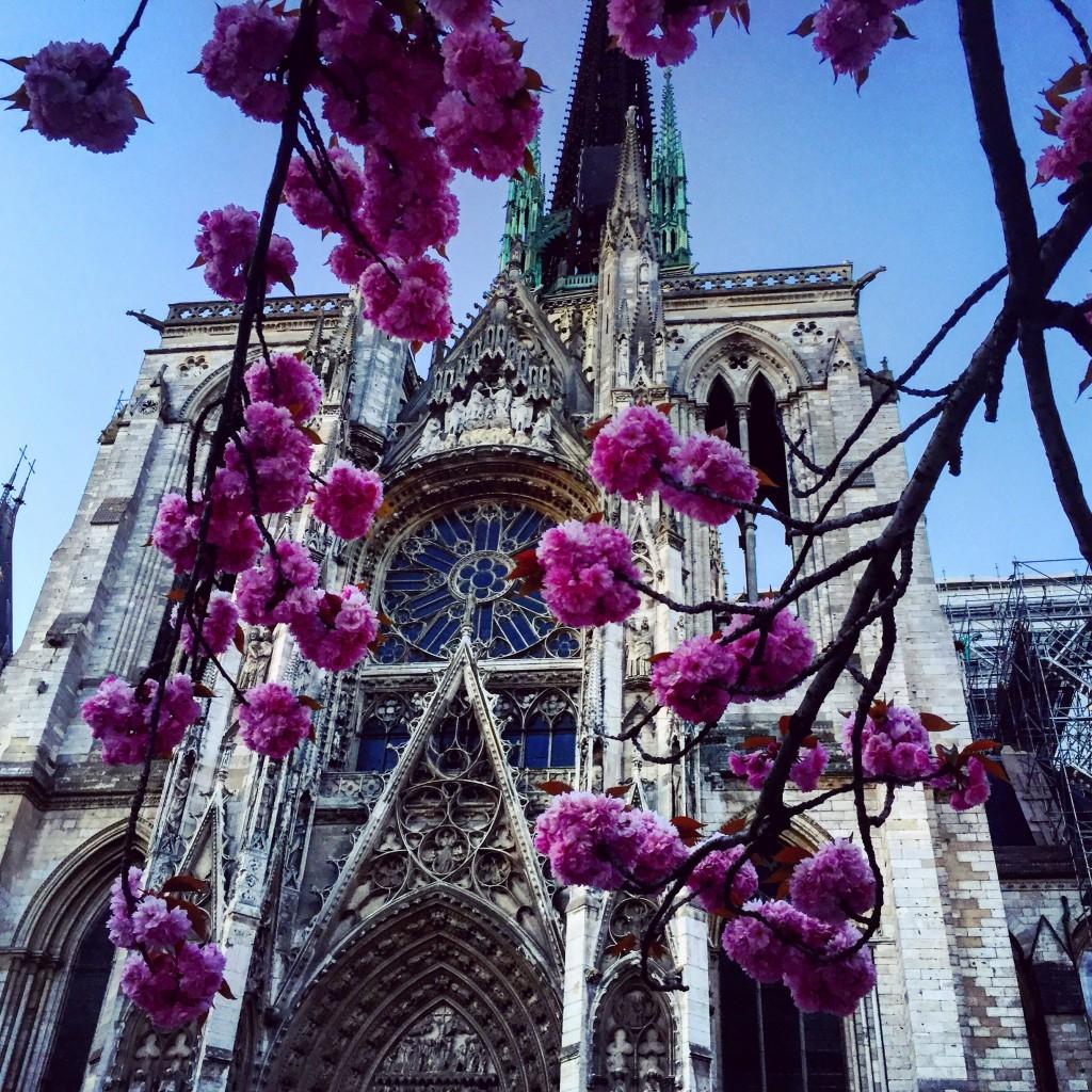 La cathédrale de Rouen au printemps