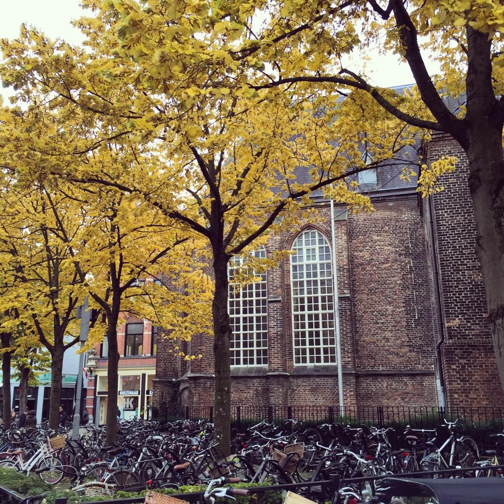 L'automne à Venlo