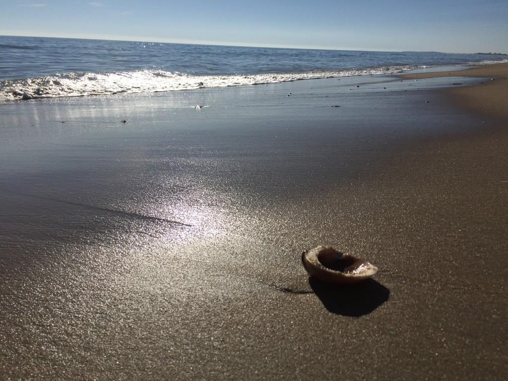Le sable regorge de soleil