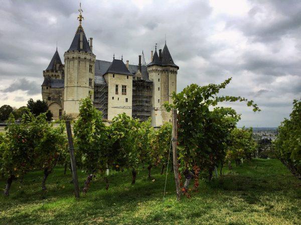 Saumur, subtil mélange de la vigne et d'un château