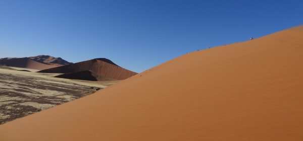 Le désert du Namib, une étendue de sable immense et désertique