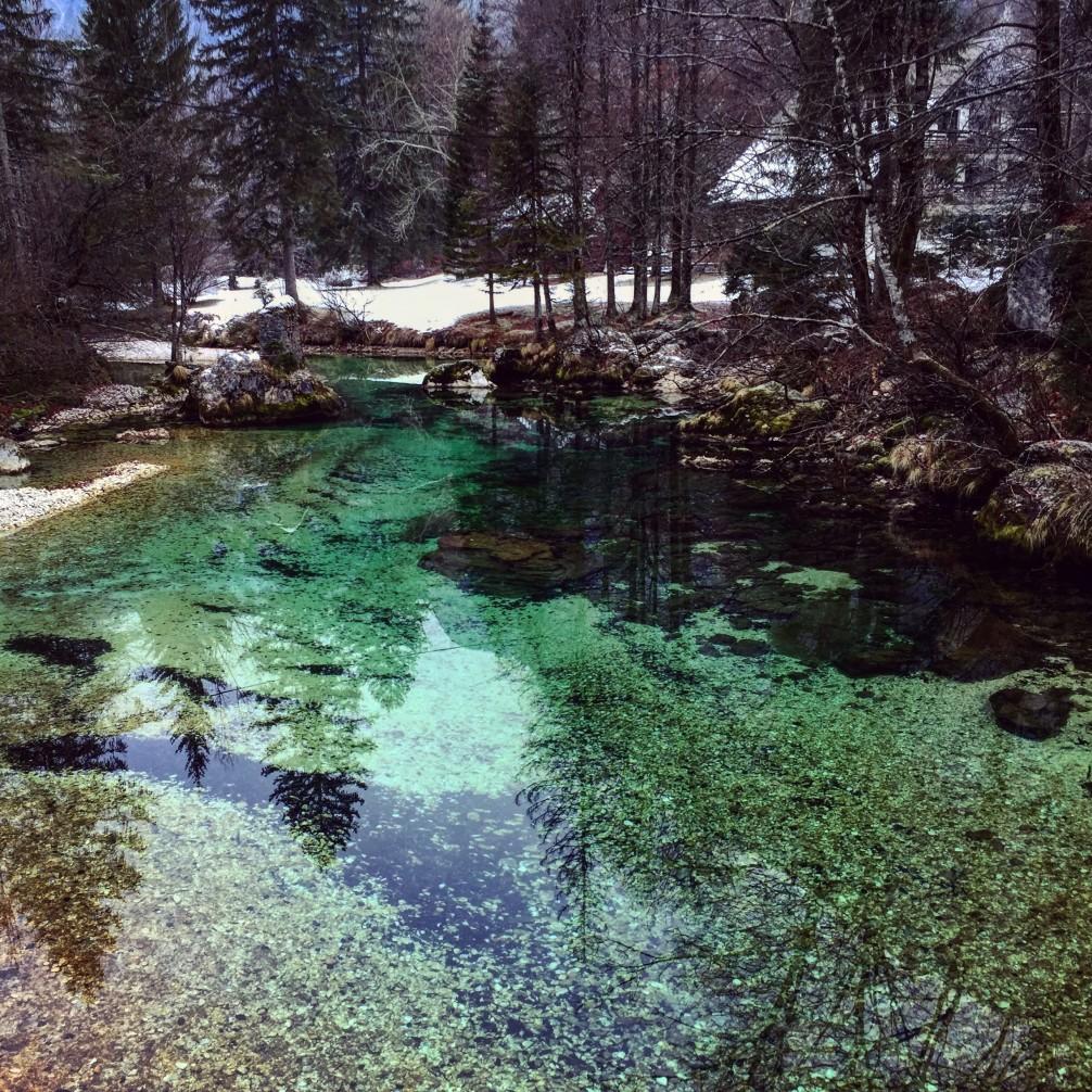 Une petite rivière translucide qui vient alimenter le lac de Bohinj