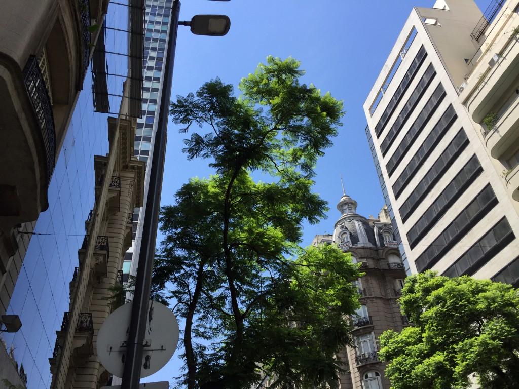 Buenos Aires en janvier