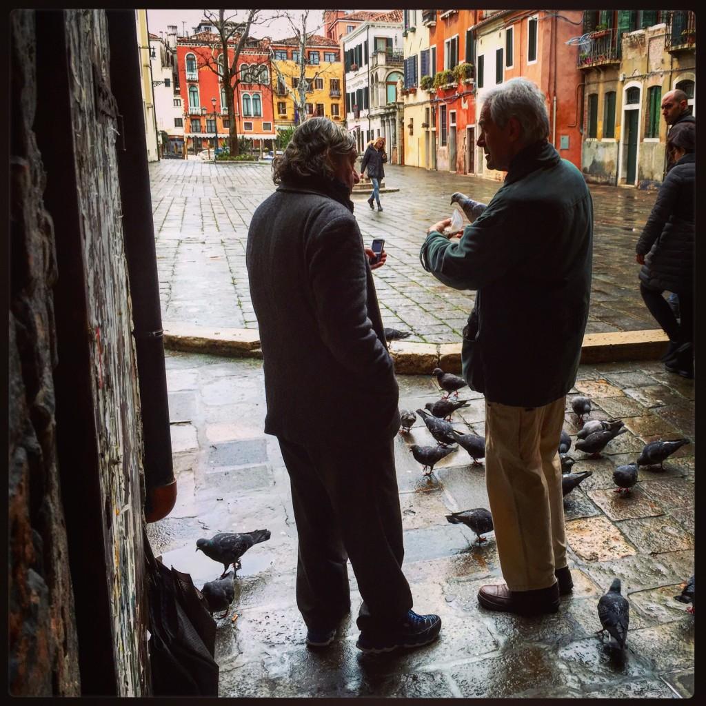 Discussion entre vénitiens et quelques pigeons