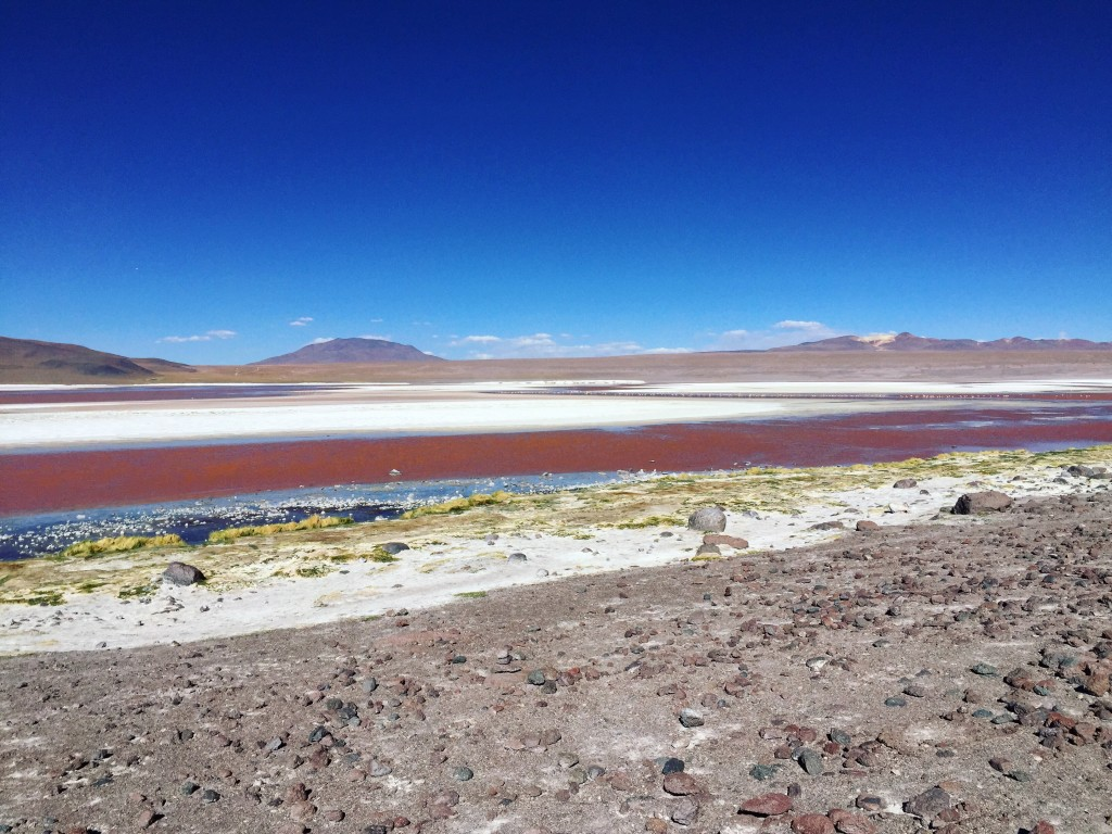 Laguna Colorada... Un spectacle exceptionnel.