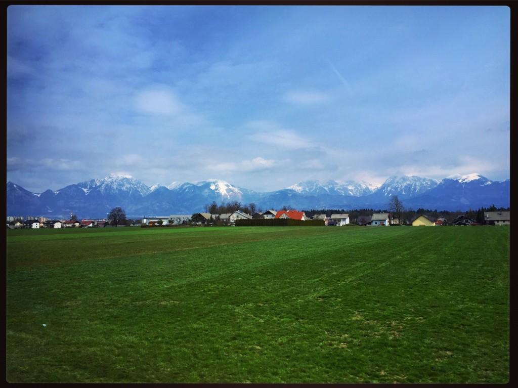 Un printemps vert primevère en Slovénie
