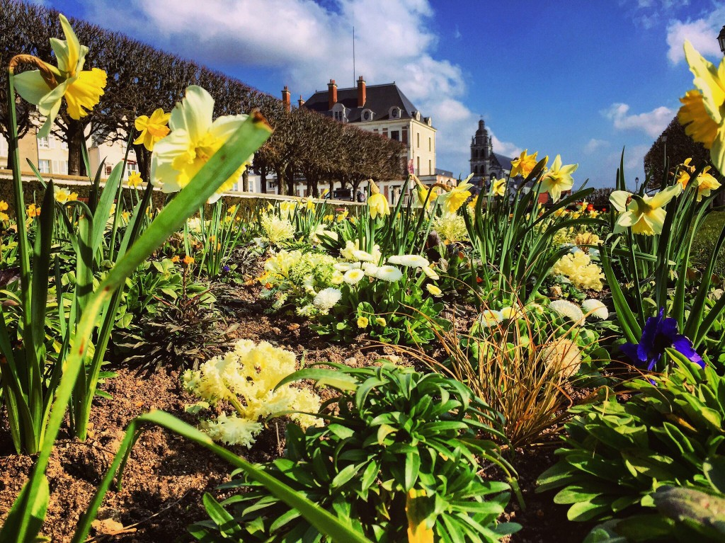 Le jardin des lices à Blois