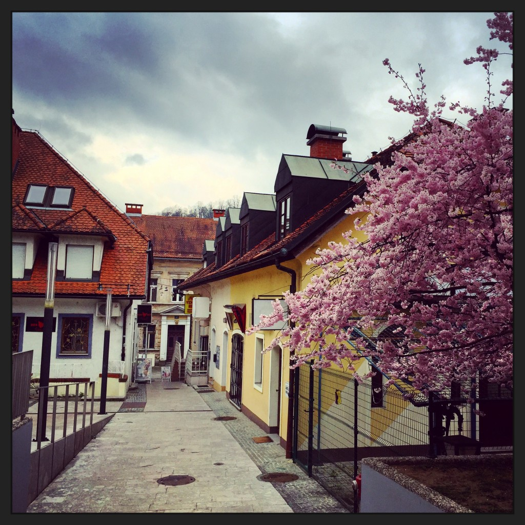 23. Une petite rue du centre de Ljubljana