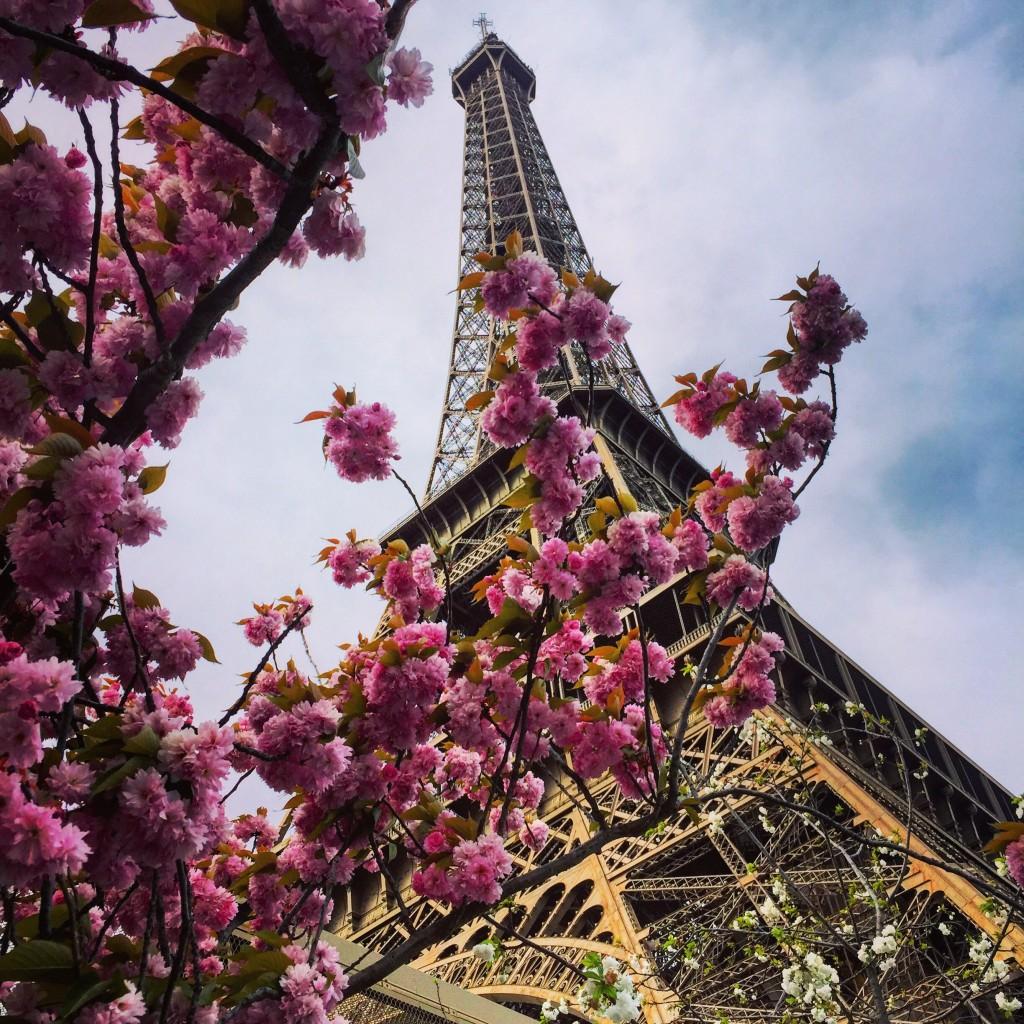 La Tour Eiffel au printemps! L'un des lieux les plus visités de France.