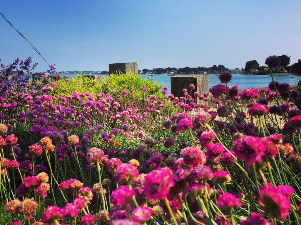 Une vue imprenable sur le golfe du Morbihan depuis Locmariaquer