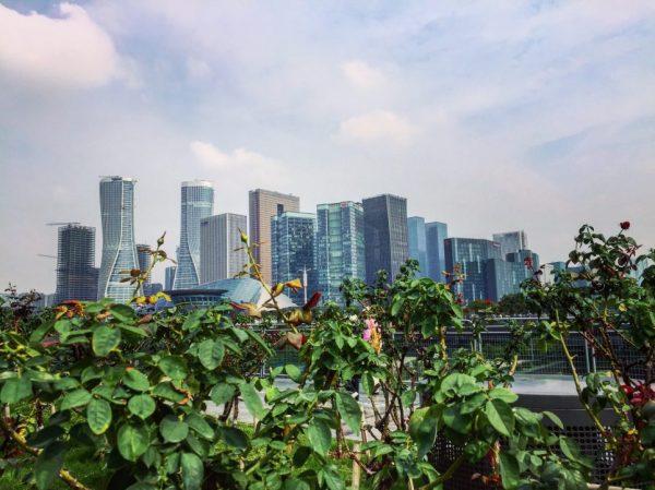 Hangzhou, le nouveau visage de la Chine