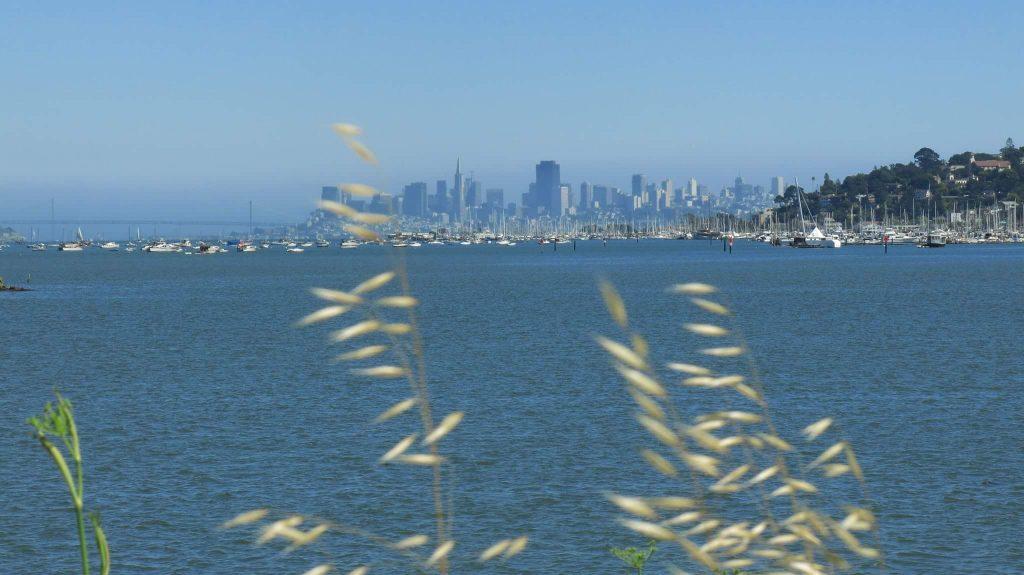 Los Angeles, la deuxième plus grandes villes des États Unis