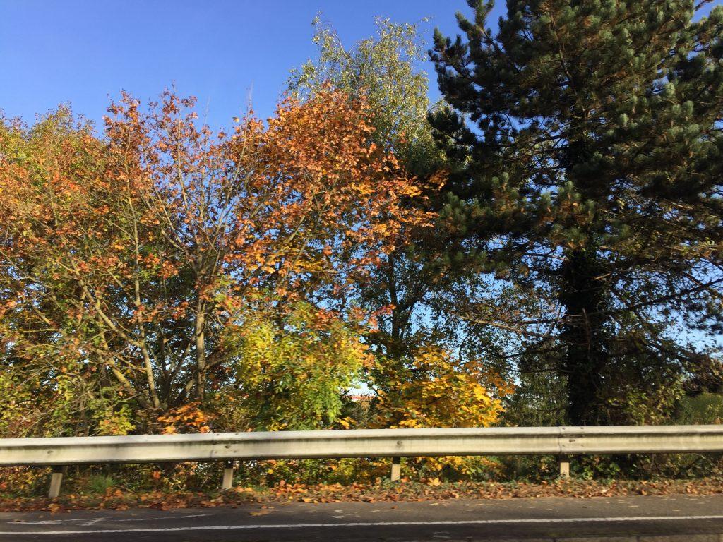 Sur la route, l'automne fait son cinéma