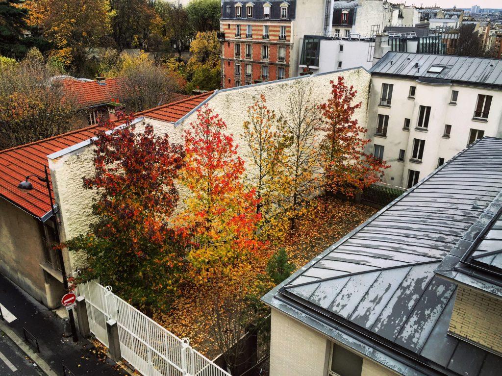 Variation d'automne à Paris