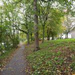 un parc bordé par la Weser