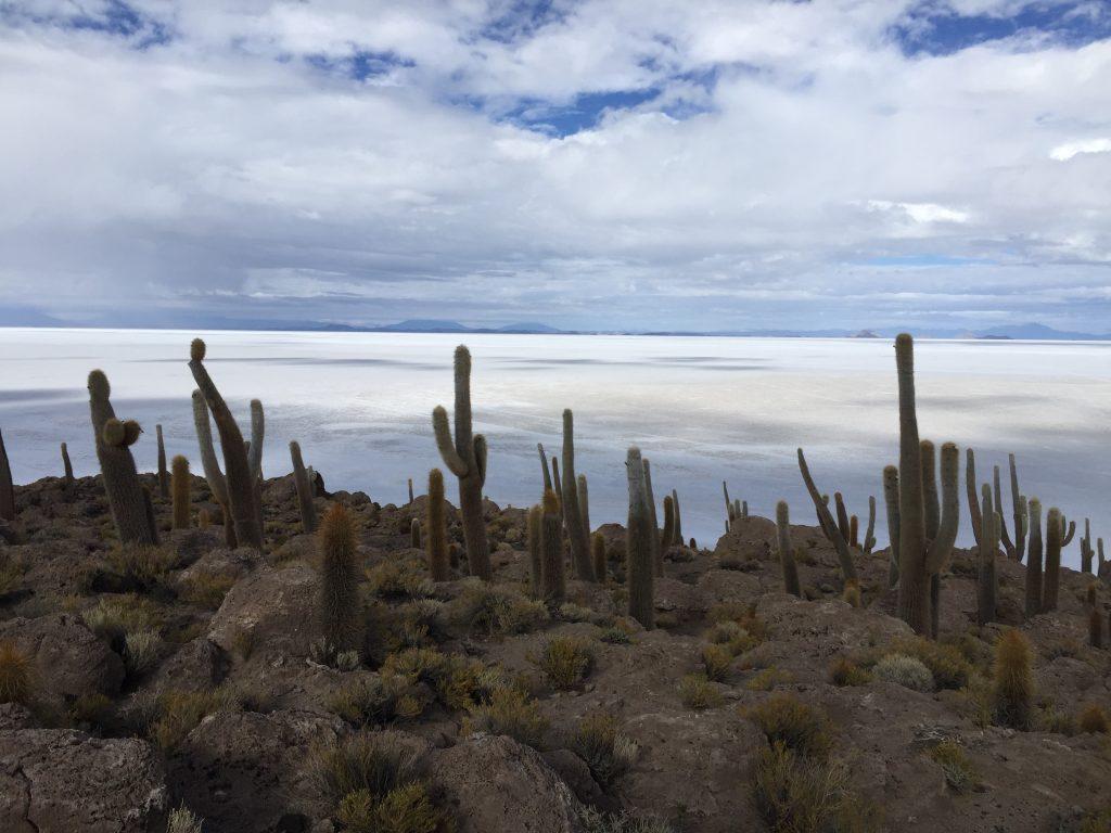 En Bolivie un désert de sel à perte de vue