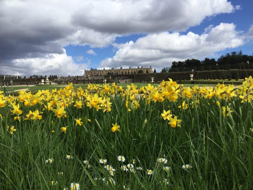 Balade en avril dans le Parc du château de Versailles