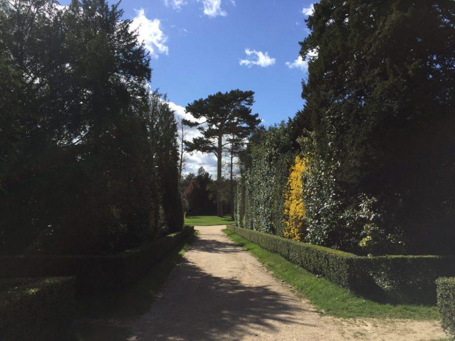 Le bosquet de la Reine, dans le parc du château de Versailles