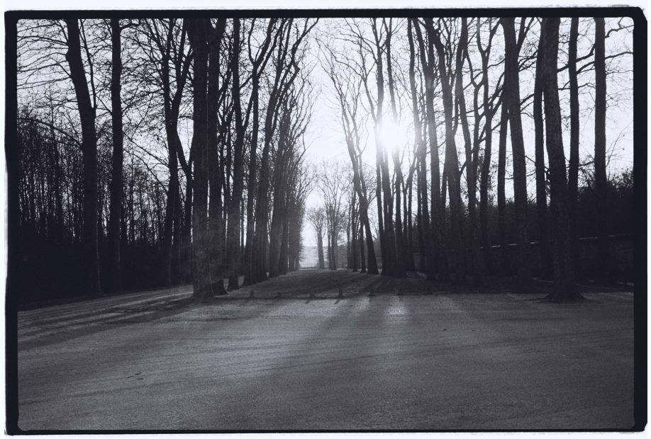 balade dans le parc du château de Versailles, le plus grand château du Monde
