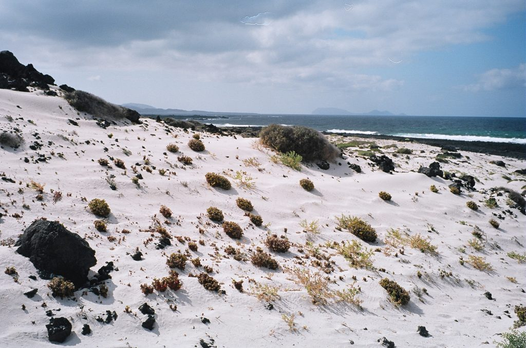 Incroyable sable blanc sur l'île volcanique de Lanzarote