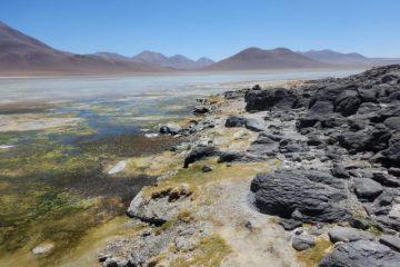 La laguna blanca, Bolivie.