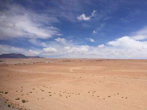 Le désert dAtacama dans le nord du Chili