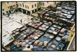 Les tanneries de Fès au Maroc