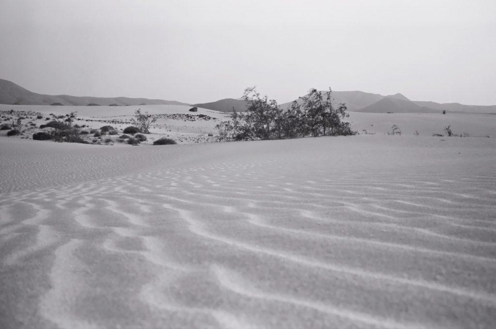 Une étendue de sable dans le nord de Fuerteventura