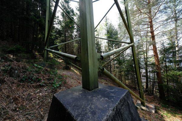 Au pied d'un pylône dans une forêt suisse