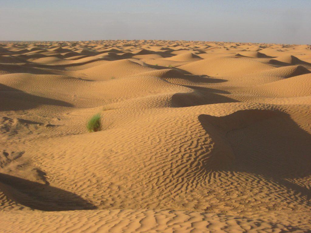 Le désert et du sable à l'infini, dans le Sahara