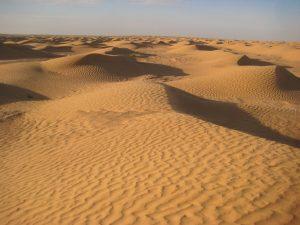 Les dunes du Sahara devant moi à perte de vue