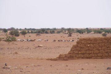 Le Niger un pays sec et chaud