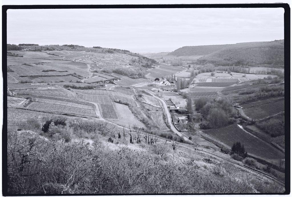 Sur la route des grands crus de Bourgogne