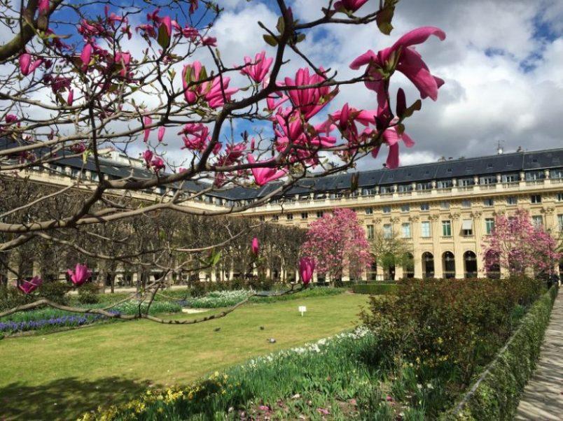 Les jardins du Palais Royal