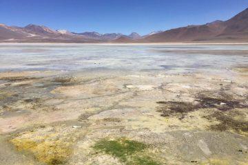 La laguna blanca dans le sud de la Bolivie